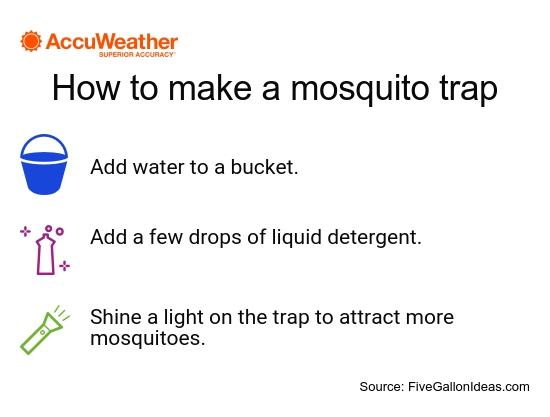Keep bugs away this summer with these 5 DIY hacks
