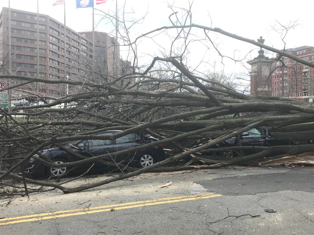 Reports: Hurricane-force winds whip Northeast, leave over 2