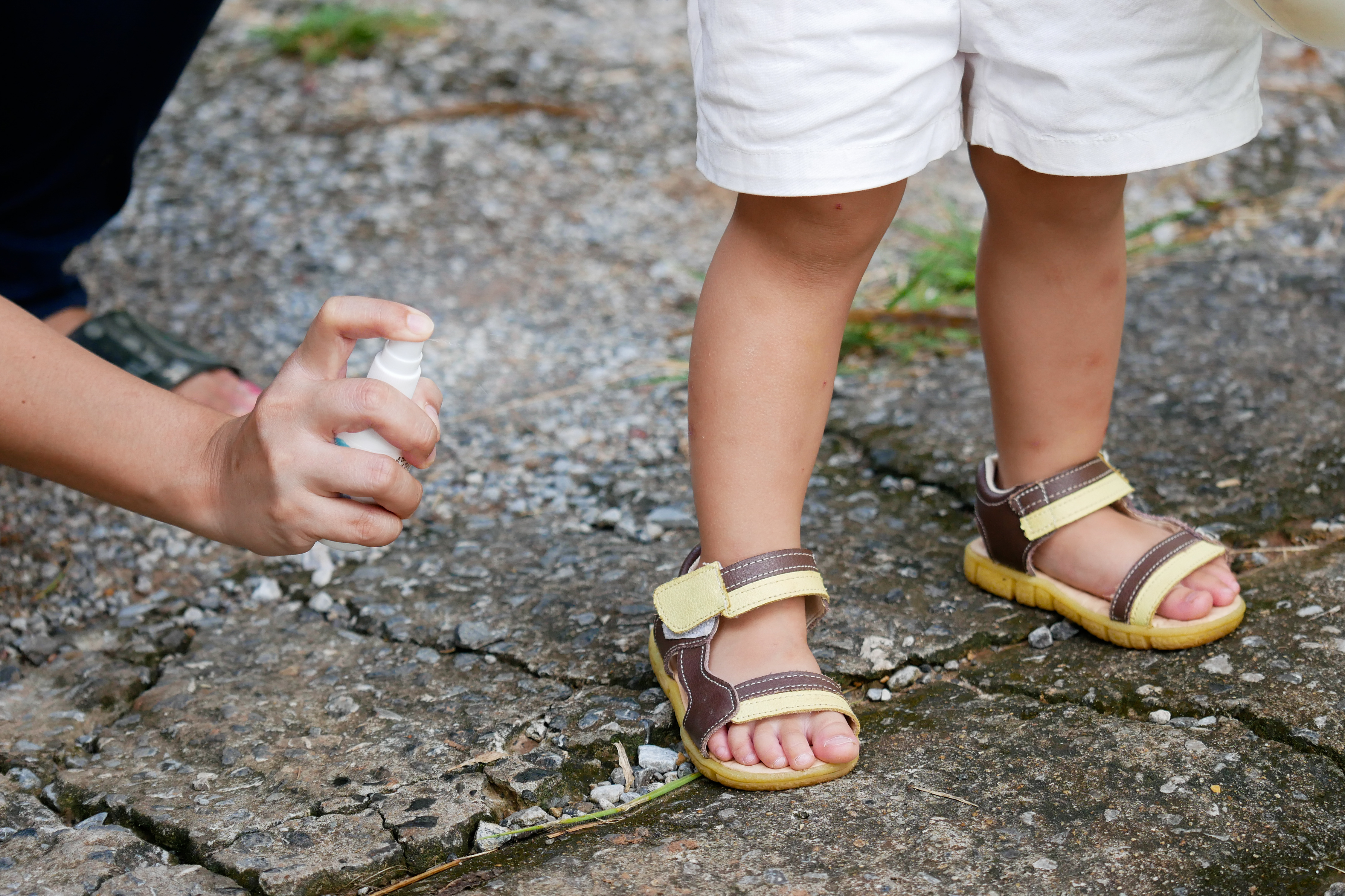 Which Family Friendly Repellents Work Best To Ward Off Pesky