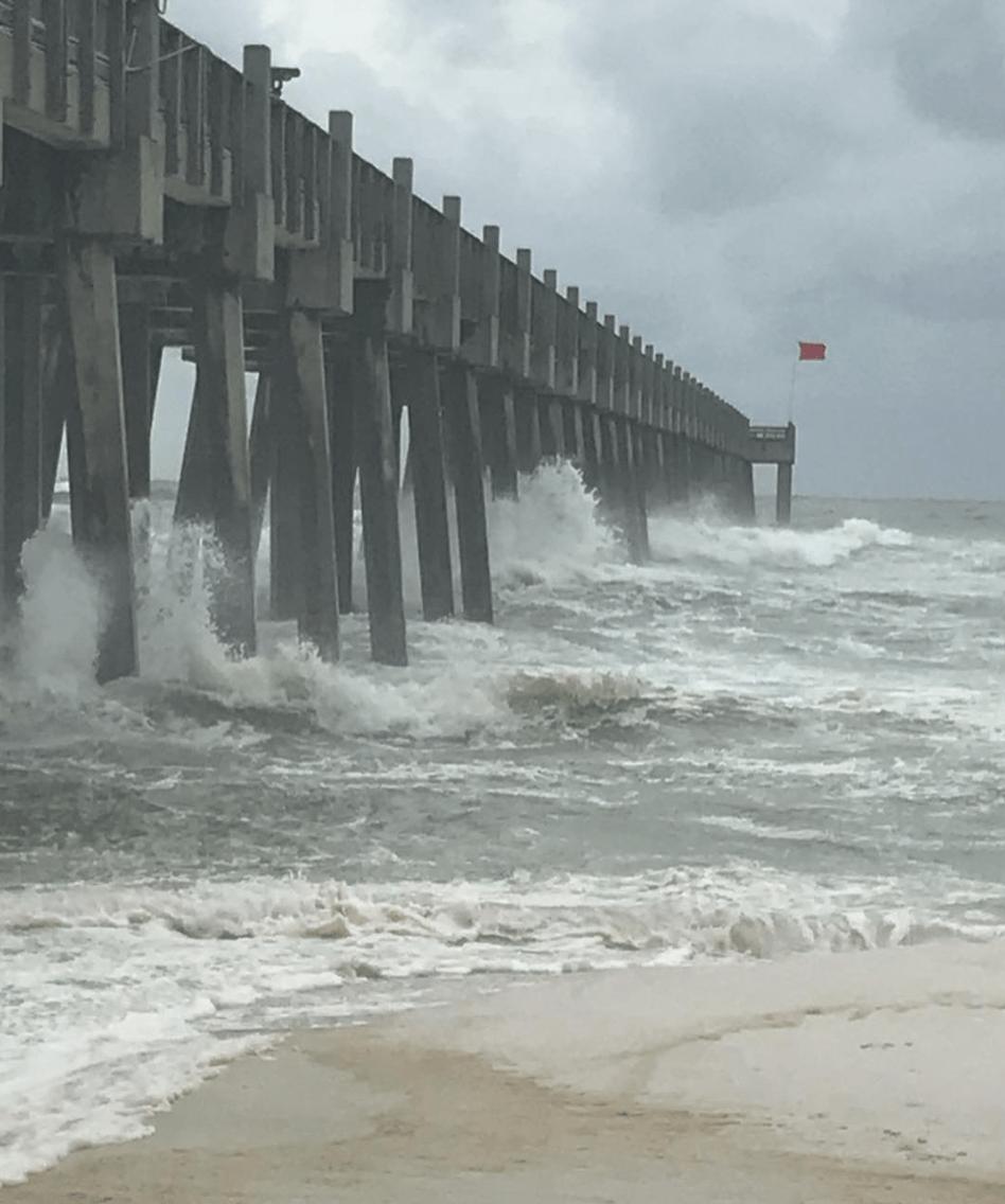 Reports: Unprecedented Category 4 Hurricane Michael makes