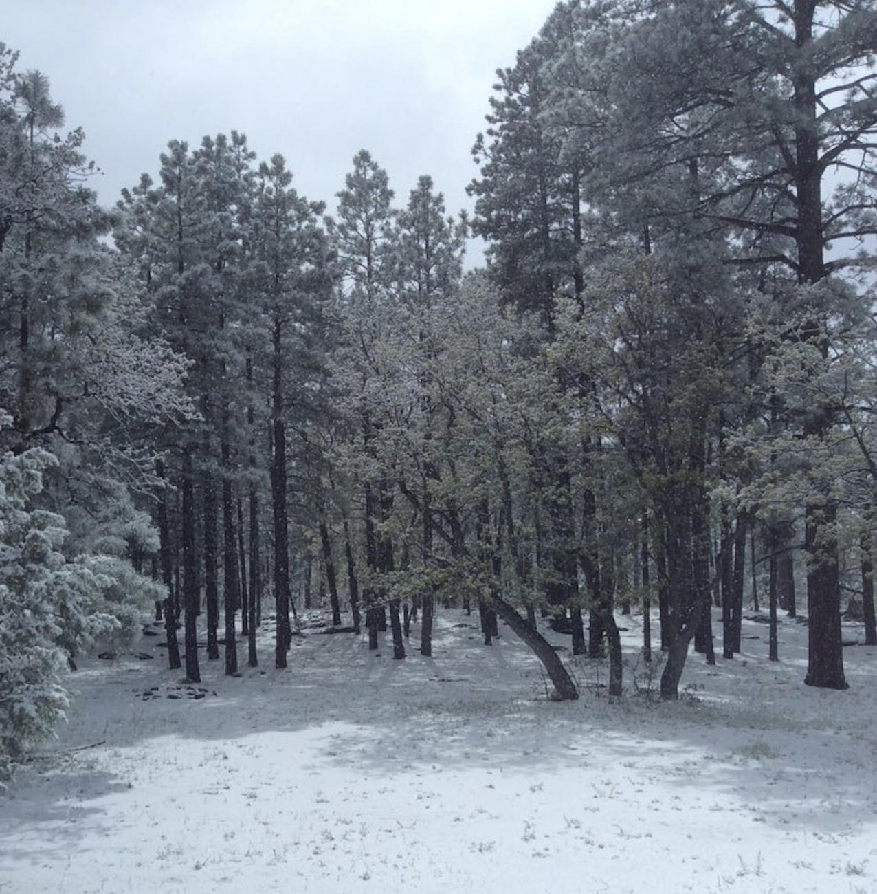Late-season snow snarls travel in Colorado