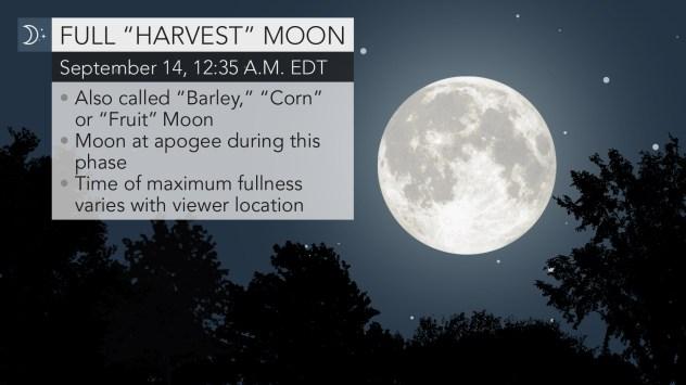 harvest moon 2019