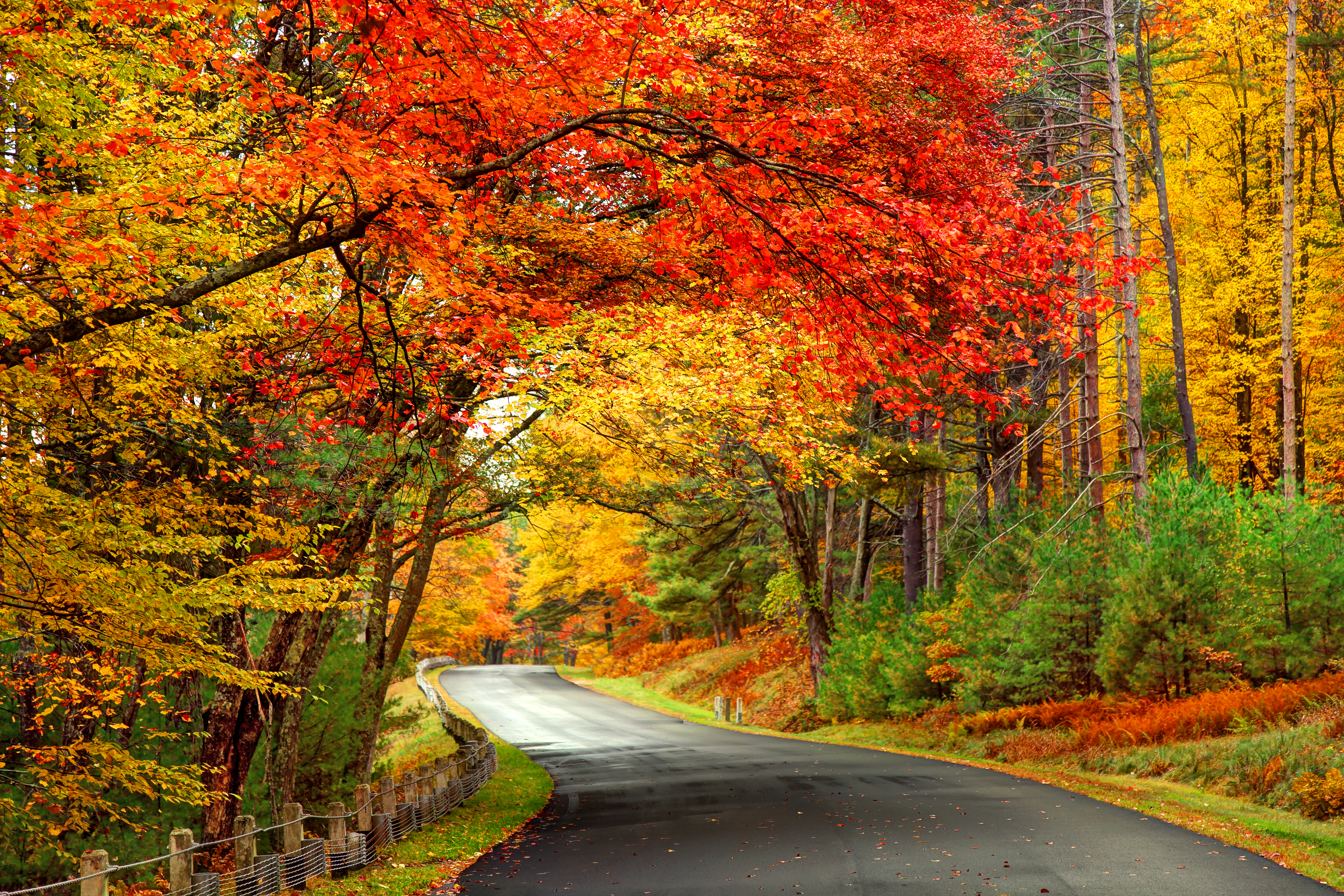 New England Fall Foliage Tours 2020.Accuweather S 2019 Us Fall Foliage Forecast Accuweather