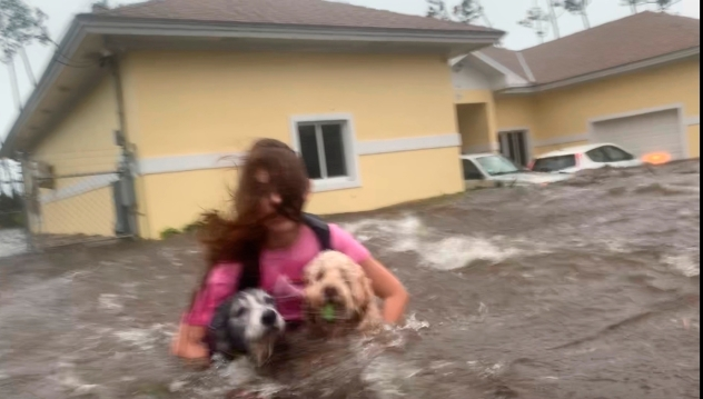 Dramatic escape from hurricane floodwaters caught on video