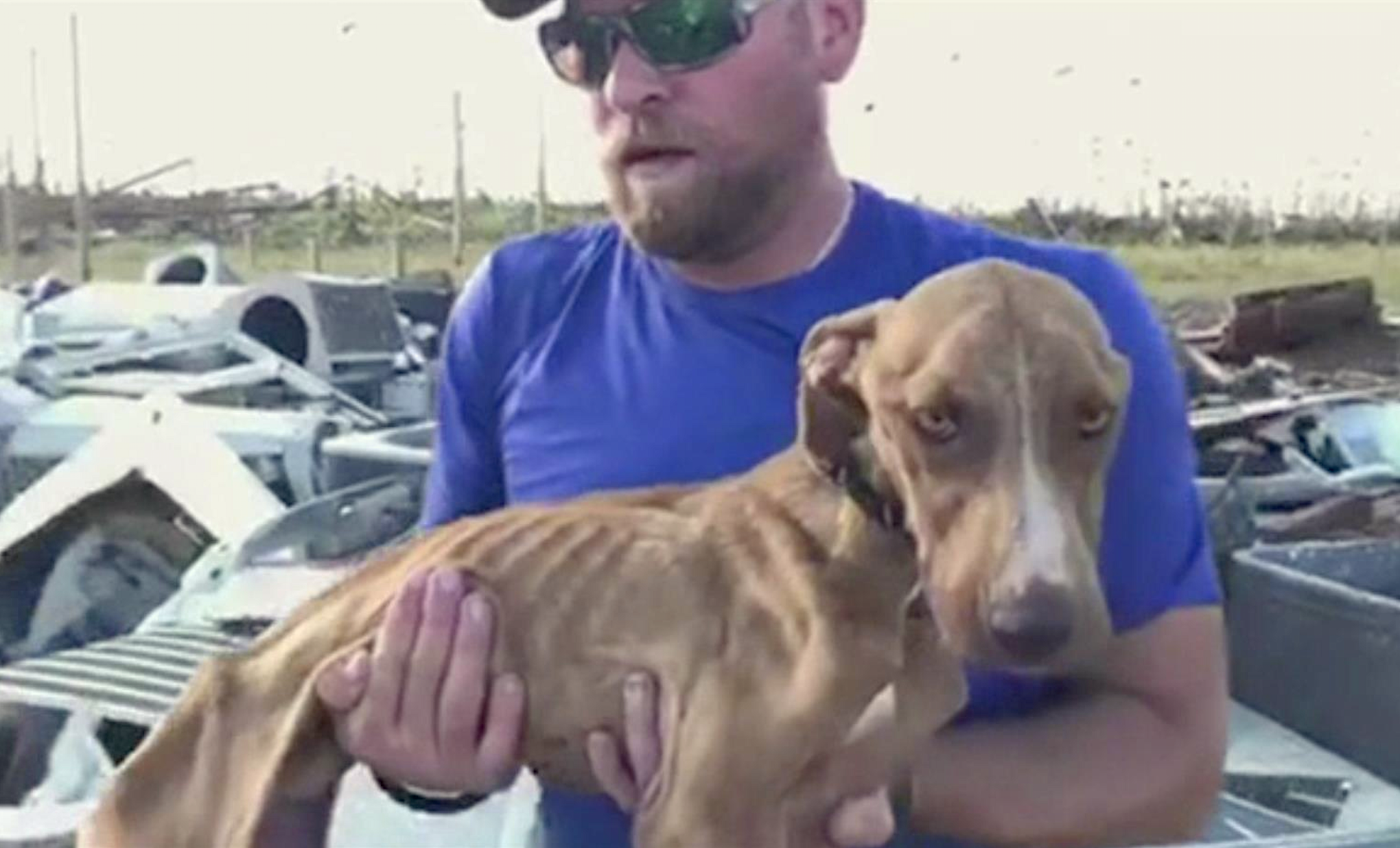 'Total miracle:' Dog found alive in rubble over a month after Hurricane Dorian's rampage