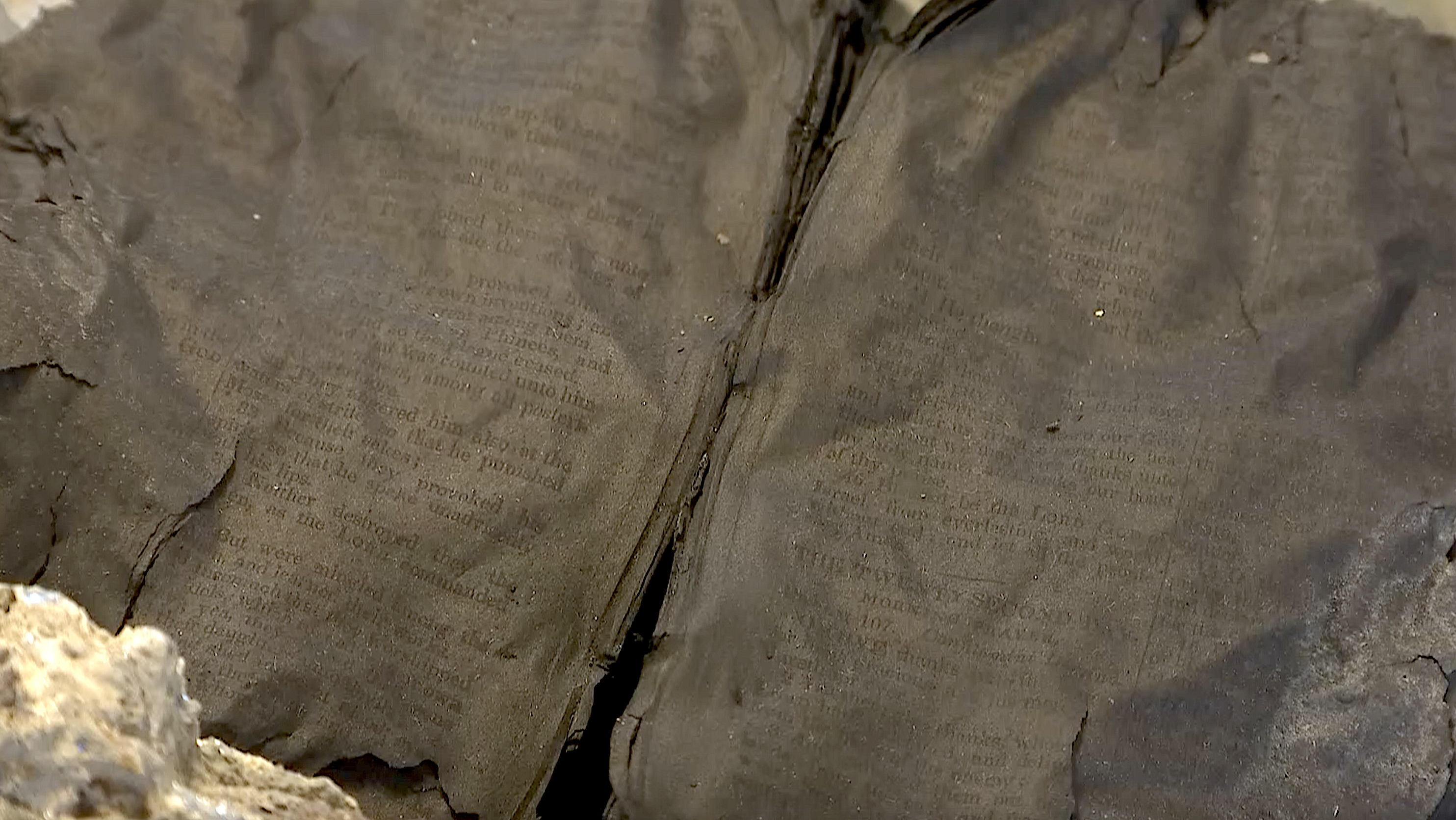 Bible found opened to Psalm 106 and 107 one of few objects to survive deadliest fire in US history